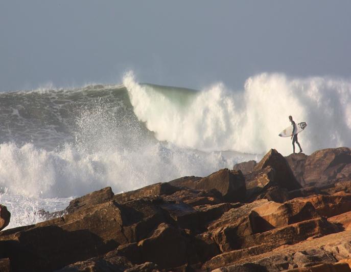 career at surf berbere