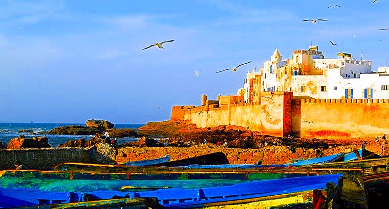 essaouira day trip from surf berbere